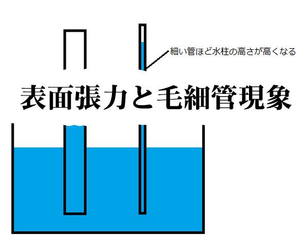 表面張力と毛細管現象