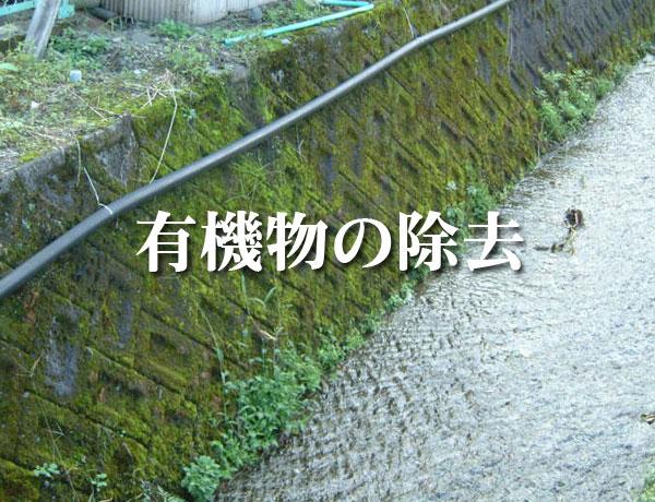 コンクリート構造物中の有機物の除去